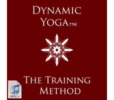 Dynamic Yoga TTM - SURYAVINYASAKRAMA classes
