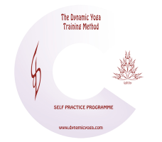 Dynamic Yoga TTM - Deep Seeing